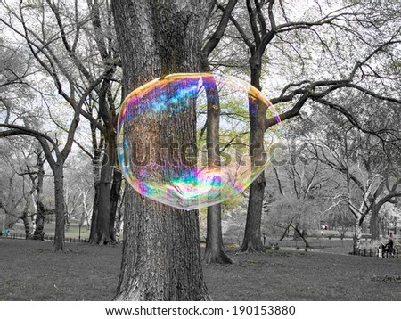 Large bubble in New York Central Park USA - stock photo