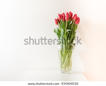 Large bunch of red tulips in tall glass vase on white table against white wall