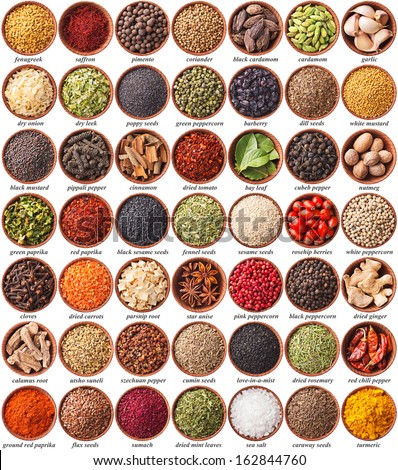 large collection of different spices and herbs with labels - stock photo