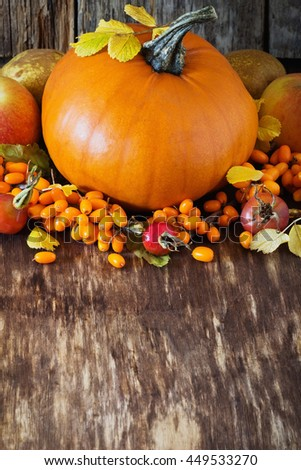 Large delicious pumpkin and different fresh fruit on wooden background. Bio healthy food. Organic vegetables.  Rustic style. Selective focus
