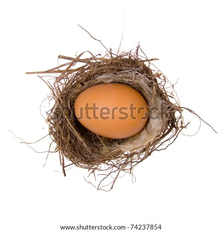 Large egg in the nest on a white background