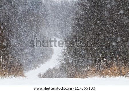 Large flakes of snow and the road in the winter wood - stock photo