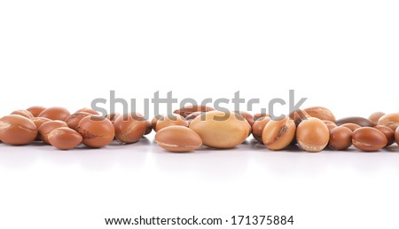 Large group of argan nuts on a white background. Plenty of copy space. Horizontal studio shot. - stock photo
