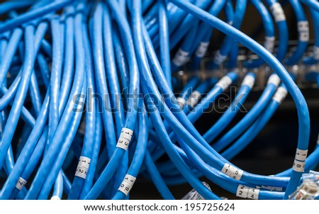 Large group of blue utp Internet cables with numbers