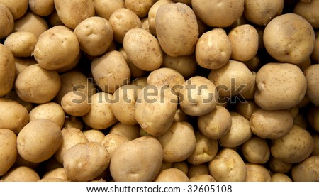 Large group of just harvested new potatoes at local farmers market