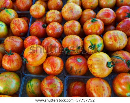Large group of multicolored, organic heirloom tomatoes at farm market - stock photo