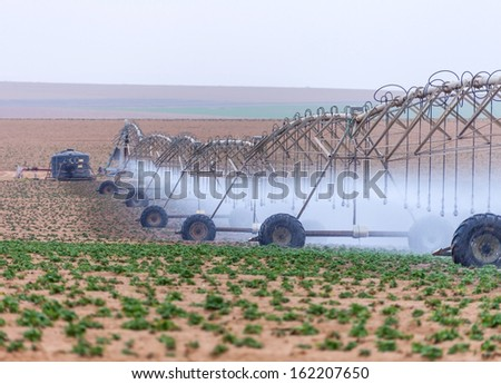 large irrigation systems arable crops summer day - stock photo
