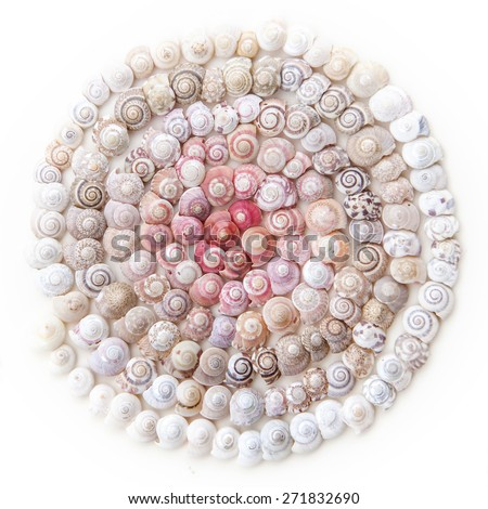 large number of tiny seashells arranged in spiral shape - stock photo