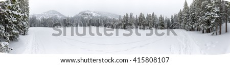 Large pano of Beautiful winter scene landscape background with snow covered green trees in a wild park setting