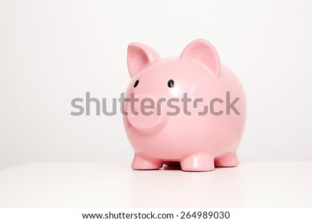 Large pink piggy bank in studio