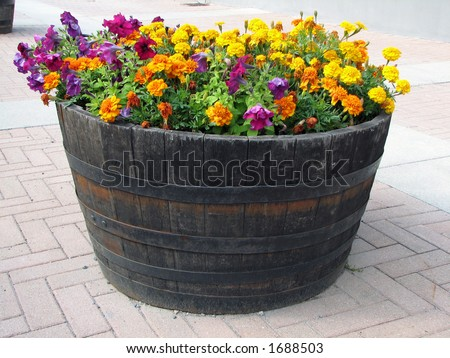 Large pot with flowers - stock photo