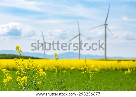 Large view on the windmills on the yellow colza field