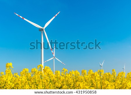 Large view on the windmills on the yellow rape field