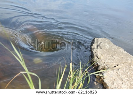 large vortex  whirlpool noticed  in the river