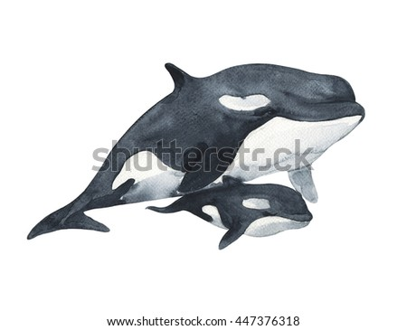 Large whale with a baby - watercolor technique. Ocean fish. Hand painted realistic illustration isolated on white background. - stock photo