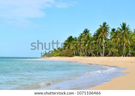Las Terrenas Dominican Republic April  2018:Beautiful seascape Atlantic ocean calm waves on a sandy beach with palm trees.