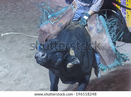 LAS VEGAS - MAY 16 : Cowboy Participating in a Bull riding Competition at the Helldorado days Rodeo , A professional Rodeo held in Las Vegas on May 16 , 2014  - stock photo
