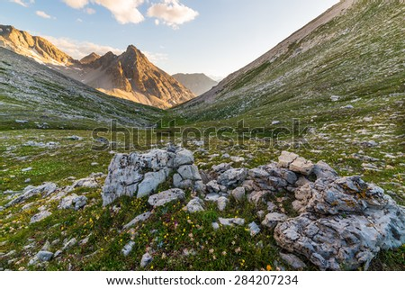Last warm sunlight on glowing mountain peaks of the italian french Alps. Wide angle from above view with rocks and flowering meadow in the foreground. - stock photo