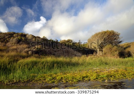 late afternoon light on rural California hills - stock photo