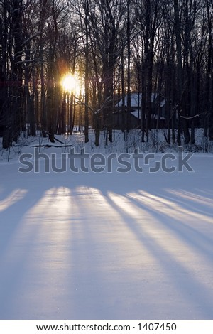 Late day sun shines through the trees surrounding a house in the woods and onto a field of snow in western New York. - stock photo