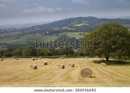 Late summer countryside scene showing farmland and hay bales in Mid Wales - stock photo