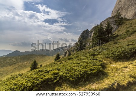 Late Summer Mountain Landscape