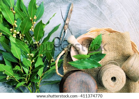 laurel on a wooden, aromatic spice ,,cooking concept - stock photo