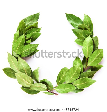 Laurel wreath made of dried branches and leaves isolated on a white background - stock photo