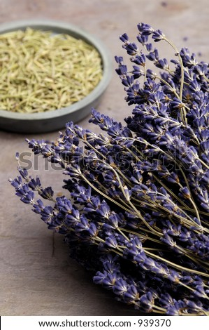 Lavender and Rosemary - stock photo