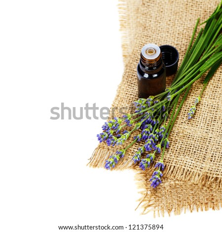lavender aromatherapy (fresh lavender flowers,  essential oil) over white - stock photo