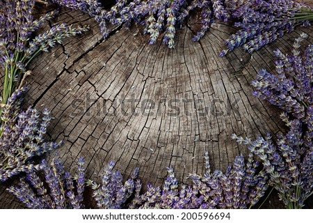 Lavender background. Lavender flower bunch on wood. Floral background - stock photo