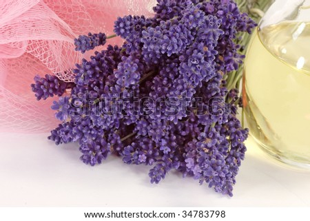 Lavender blossoms, pink sponge and oil in a bottle on bright background