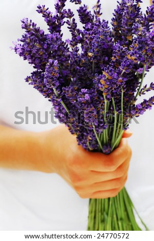 Lavender bouquet - stock photo