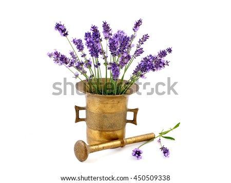 Lavender - bunch of flowers on white background, in mortar.  Fresh herbs.