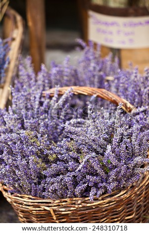 Lavender bunches selling in a outdoor french market. Vertical shot with selective focus - stock photo