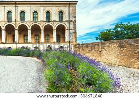 Lavender bushes at the old building