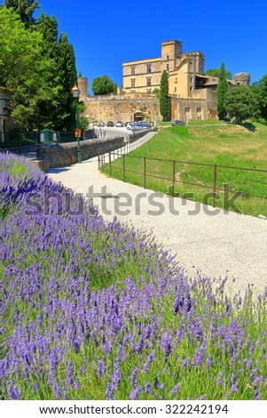 Lavender field and distant building of the Lourmarin castle in Provence-Alpes-Cote d'Azur district, France