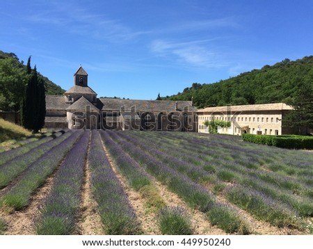Lavender field at Abbey in Provence, France