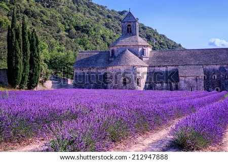 Lavender fields at Senanque monastery, Provence, France - stock photo