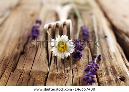 lavender flowers and fork  - stock photo