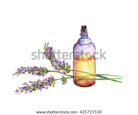 Lavender flowers and oil perfume bottle. Watercolor for cosmetic, perfume, beauty design