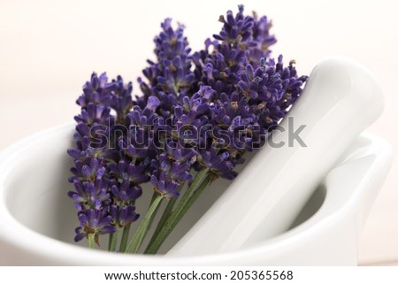 Lavender flowers in a mortar - stock photo