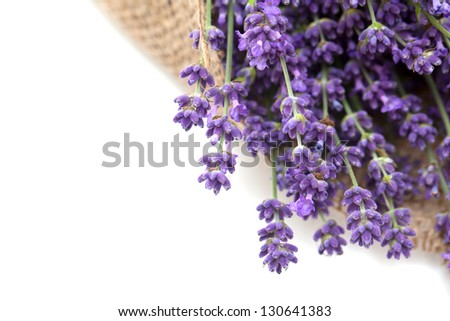 lavender flowers in burlap