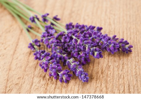 lavender flowers  on wood background