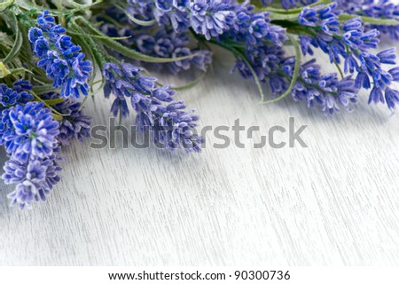 Lavender flowers over white - stock photo