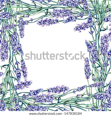 Lavender Frame - stock photo