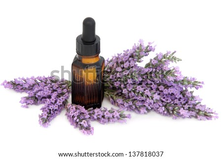 Lavender herb flower sprigs with aromatherapy essential oil bottle over white background.