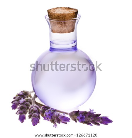 Lavender herb flower water in a glass bottle with flowers , isolated on white background. - stock photo