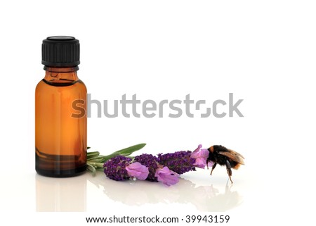 Lavender herb flowers with a bumble bee and aromatherapy essential oil glass bottle, over white background.