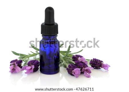 Lavender herb flowers with aromatherapy essential oil glass dropper bottle , isolated over white background with reflection. - stock photo